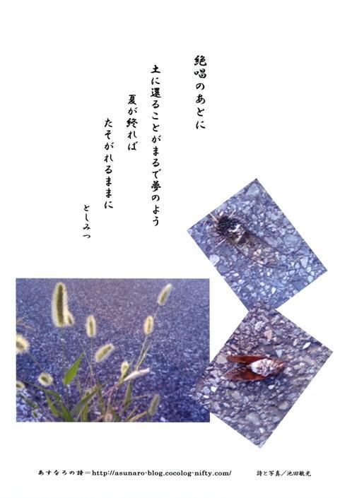 20079_11